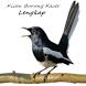 Kicau Burung Kacer Lengkap