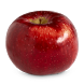Apple Recipes by Green Developer 380