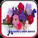 Flores con frases de amor para compartir by VERO APPS