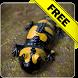 Salamander Free live wallpaper by Infomedia BH