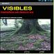 VISIBLES ESPAÑOLAS SIGLO XX by JORDI DE LA TORRE