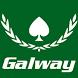 Galway Poker Festival by Plus EV Media