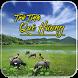 Nhac Tru Tinh Que Huong by Michael Siro
