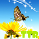 live wallpapers butterfly by TTR