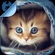 Kitty Cat Breeds Quiz HD by Mangata Media