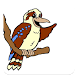 Kookaburra ELC by Kindyhub