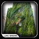 Vertical Garden Design Ideas by Life Break