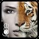 InstaFace:face eyes morph by riki