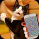 Cat Hypnosis Illusion Joke by GoodStoryApps