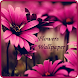 Flowers Wallpaper by IKYAGlobal