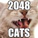 Cats 2048 - Free Puzzle Game by enknamel