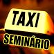 Táxi Seminário by Paluch Soft.