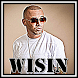 Wisin - Move your Body