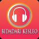 Lagu Dangdut BIDADARI KESLEO Versi Lengkap by ANDROMEDA MUSIC Ltd.