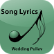 Hindi Lyrics of Wedding Pullav