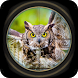 FPS Bird Hunter: Sniper Shooting Best Free Game by Gallant Games