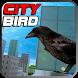 City Bird by MiamiCrimeGames