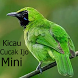 Kicau Cucak Ijo Mini by Tidut app