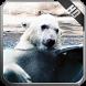 Polar Bear Wallpaper by MagicIdea