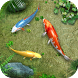 Water Koi Fish Pond LWP by TFish Tech, Inc.