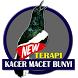 Terapi Kacer Macet Bunyi by imediandroid