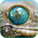 Reptile Live Wallpaper by Tanguyerfo