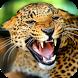 Predators Live Wallpaper by lymphoryx