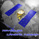 Hayabusa Landing Mission by Angelforest Inc.