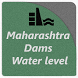 Maharashtra Dams Water Level