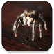 Spider Live Wallpaper