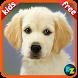 Kids Preschool Top Flashcards by Kidzooly