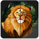 Wild Animal Hunt Jungle Sniper by Funright Productions