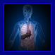Organ Tubuh Manusia by JebagGodev