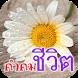 คำคมชีวิต ใหม่ล่าสุด by Maliwan App