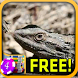 Pristine Bearded Dragon Slots by Signal to Noise Apps