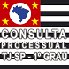 Consulta Processual - TJ/SP by Publiquei - Marketing Inteligente