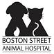 Boston Street Vet by Vet2Pet