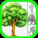 How To Draw Tree by Amilova Apps