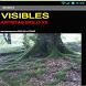 VISIBLES ARTISTAS SIGLO XX by JORDI DE LA TORRE