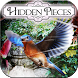 Hidden Pieces: Aviary by Difference Games LLC