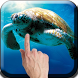 Sea Turtle Live Wallpaper by NeonApp