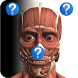 Anatomy Quiz Free by Education Mobile