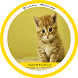 Suara Kucing Mp3 by agastudio