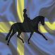 Sterntorp Dressage by Tellwell Apps By E K A Audio