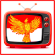 TV Indonesia Free by Anonim Inc