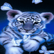 Tiger Butterfly LWP by Daksh Apps