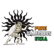 Pune Warriors India by adeptpros