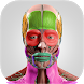 Anatomy Cards Anatomicus by Anatomicus Anatomy Apps