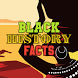 Black History Facts by Ade Oyegoke