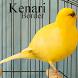 Kicau Kenari Border by Tidut app